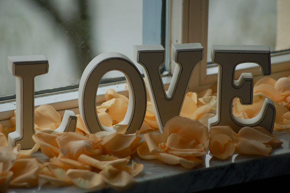 Bilder von Frau Meister-Hochzeit 028-1000