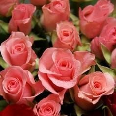 hochzeitsblumen_rosen 1