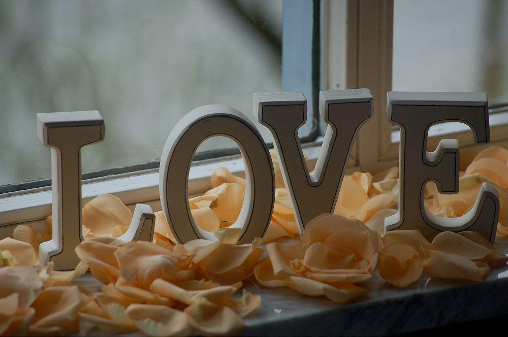 Bilder von Frau Meister-Hochzeit 032-1000